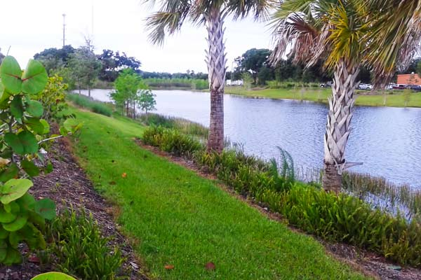 Port st lucie rv park resort camping psl village rv park for Camping world winter garden fl